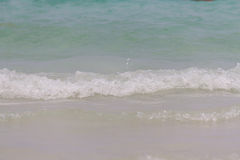 Morze fala podrzucać dalej wybrzeże Obrazy Stock