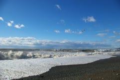 morze falowa zimy. Obrazy Royalty Free