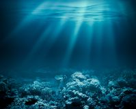 Morze głęboki lub ocean podwodny z rafą koralowa jako a