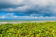 Morze i niebo Zdjęcia Stock
