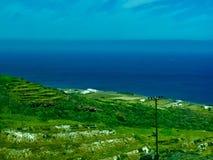 Morze i zieleń fotografia stock