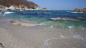 Morze Japonia w wiośnie zdjęcie wideo