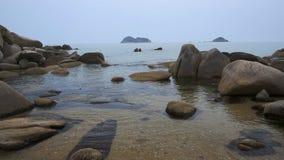 Morze Japonia w wiośnie zbiory