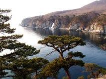 Morze Japonia, wybrzeże Daleki Wschód biosfery Morska rezerwa Obrazy Stock