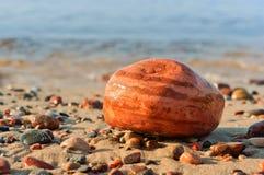 Morze kamienie, kamienie od morza, kamienie różny rozmiar i kolor, duzi i mali, Obrazy Royalty Free