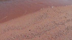 Morze macha bicie przeciw piaskowatej plaży zdjęcie wideo