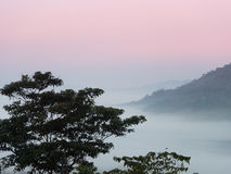 Morze mgła żadny lasowy i halny czerwony niebo Zdjęcia Stock