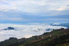 Morze mgła z lasami jako przedpole zdjęcie stock