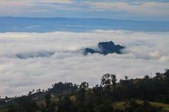 Morze mgła z lasami jako przedpole fotografia royalty free