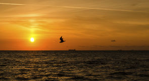 Morze na świcie Fotografia Royalty Free