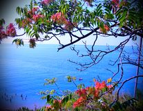 Morze odległość Fotografia Royalty Free