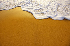 Morze piana Obraz Stock