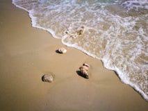 Morze, piasek, fala, kamienie w Montenegro zdjęcia royalty free