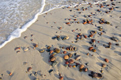 Morze plażowy piasek i moczy kamienie Zdjęcia Royalty Free