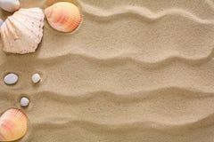 Morze plażowy piasek, seashells tło, naturalni seashore kamienie i rozgwiazda, Obrazy Royalty Free