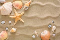 Morze plażowy piasek, seashells tło, naturalni seashore kamienie i rozgwiazda, Obrazy Stock