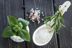 Morze sól, pieprz, perfumowi zielarscy rozmaryny i nowi liście na drewnianym, obraz royalty free