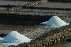 Morze sól w Fuerteventura, wyspy kanaryjska, Spain Zdjęcia Stock
