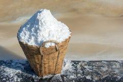 Morze sól w koszu Fotografia Royalty Free
