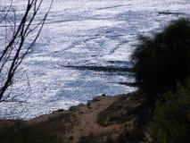 Morze srebro zdjęcia royalty free