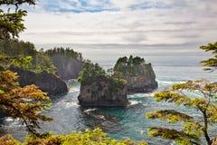 Morze sterty daleko przylądka pochlebstwo, Makah rezerwacja, Olimpijski Nati zdjęcie stock