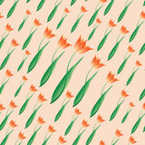 Morze tulipany czułość Zdjęcie Stock
