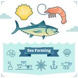 Morze Uprawia ziemię wektorową ilustracyjną kolekcję z morskiego życia elementami i kontur ikony setem aquaculture przemysłu łoso royalty ilustracja