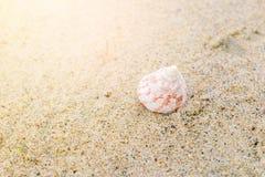Morze ?uska na piasku z kopii przestrzeni? dla teksta Czas by? na wakacjach zdjęcia royalty free