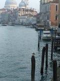 Morze Venezia fotografia royalty free