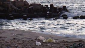 Morze w lecie zdjęcie royalty free
