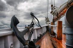 morze warty Zdjęcia Royalty Free