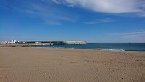 morze widzii fotografia stock
