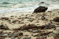Morze z kamieniami Fotografia Royalty Free