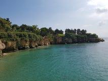 Morze, zatoka, mały przylądek przerastający z zielonymi sosnami obrazy royalty free