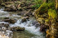 Mos-behandelde klip over een rivier royalty-vrije stock afbeelding