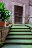 Mos-behandelde treden, gesloten deur, Rome Stock Foto
