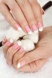 Mãos com colheita do algodão Imagens de Stock