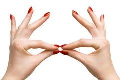 Mãos da mulher elegante Imagens de Stock