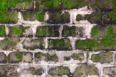 MOS de la textura en la pared del bloque de cemento Fotografía de archivo