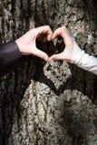 Mãos dos pares que dão forma ao coração Imagem de Stock Royalty Free