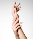 Mãos fêmeas elegantes bonitas com pele limpa saudável Imagem de Stock