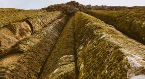 Mos op natuurlijke rotsvorming stock foto