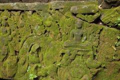 Mos op ruïnes van Angkor Wat, Kambodja Stock Foto