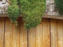 Mos op steen en houten architect Royalty-vrije Stock Foto's