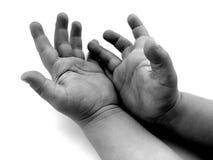 Mãos pequenas Imagem de Stock