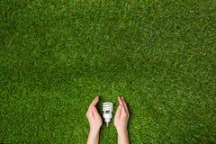 Mãos que guardam a lâmpada de poupança de energia do eco sobre a grama Fotografia de Stock Royalty Free