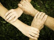 Mãos unidas Fotografia de Stock Royalty Free