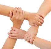 Mãos unidas Imagem de Stock Royalty Free