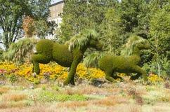 MosaïCanada 150 skärm av hästar royaltyfria foton