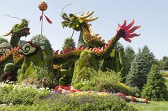 From Beijing: Blessing of the Good Omen Dragons. MosaïCanada 150, Gatineau Quebec Canada August 24, 2017: A celebration of Canada`s 150 years of royalty free stock image